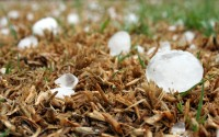 DID SPRING HAIL DAMAGE YOUR HVAC EQUIPMENT?